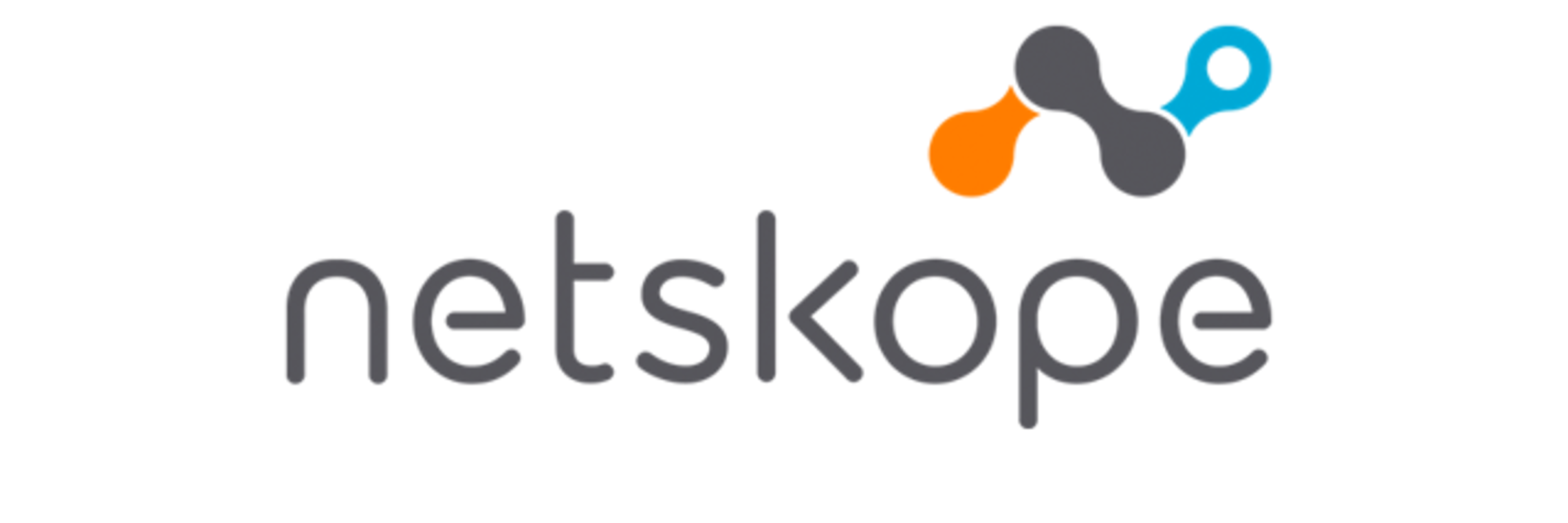 Netskope Industry Insight Logo